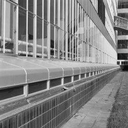 Tabakfabrik-Van-Nelle_Rotterdam3